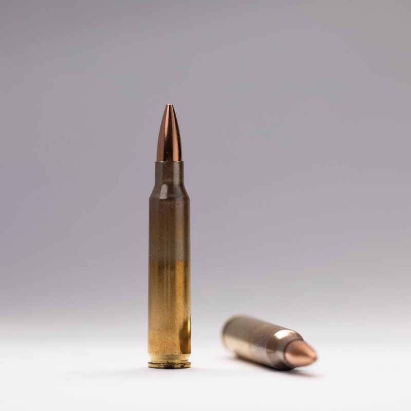 5.56 x 45mm Ball (M855)
